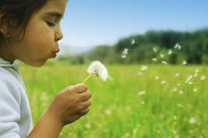 Nog veel onduidelijk over endotoxinen in de lucht