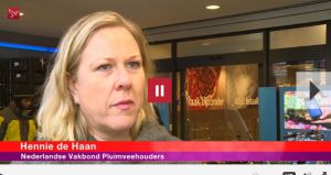 Hennie de Haan op Omroep Flevoland