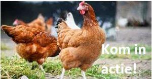HERINNERING!!!    'Maak massaal bezwaar tegen korting op pluimveerechten!!!'