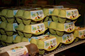 EU verleent geen verruiming status vrije uitloopeieren en Nederlandse supermarkten bieden (ook) geen oplossing