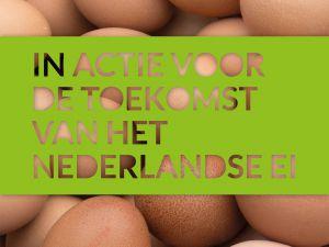 """""""In actie voor de toekomst van het Nederlandse ei"""""""